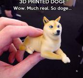 Doge print…