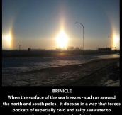 Ridiculously cool natural phenomena…