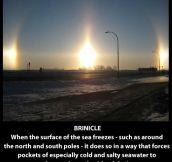 Ridiculously cool natural phenomena…