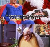 The Christmas Armadillo…