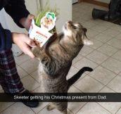Christmas present…