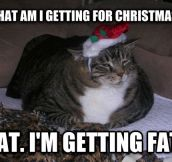 I get the same thing every Holiday season…