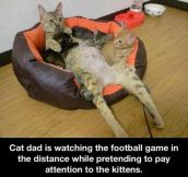 Cat dad…
