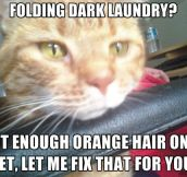 Every single time I do laundry…