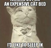 Aristocat at his finest…