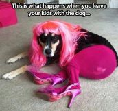 When your kids are left alone with the dog…