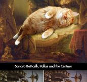 Paintings Improved by Cats…