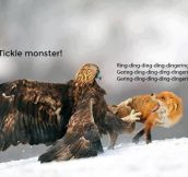Tickle monster…