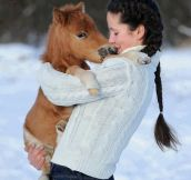 Just a girl holding a horse…