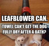 Leaf blowers can achieve anything…
