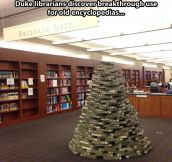 A librarian's Christmas tree…