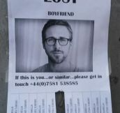 Lost boyfriend…
