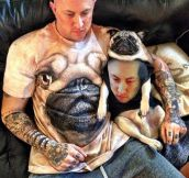 Husband in pug shirt, pug in husband shirt…