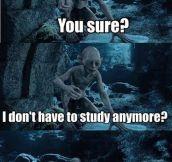 Exam week is over…