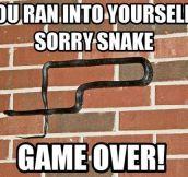 Game over snake…