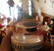 Texas snowman snow globe…