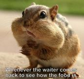 Every time the waiter comes back…