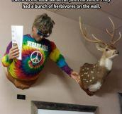 Herbivores display…