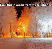Japan landscape in winter…