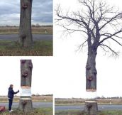 Creative art involving a tree