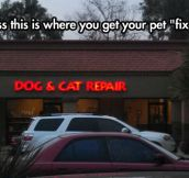 Get your pet 'fixed'