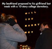 The coolest proposal