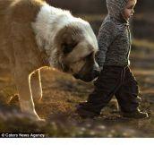 Photographer captures connection between children and animals…
