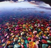 Pebble Shore Lake in Glacier National Park, Montana…