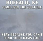 Welcome to Buffalo, NY…