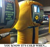 Cold in America? That's cute…