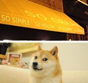 Wow. Such restaurant. Much food…