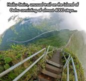 Also known as the Stairway to Heaven…