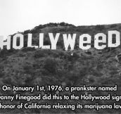 Hollywood prankster…