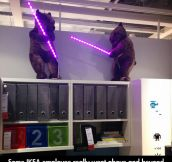 Ikea employees taking it to the next level…