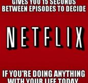 Netflix stop it, I need to live…