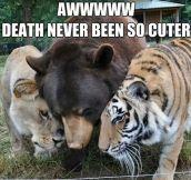 Deathly hug…