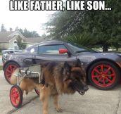Fancy wheels…