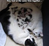 The cutest moment multiplied for two…