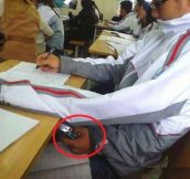 Cheating level: Expert…