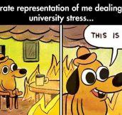 How university stress feels like…
