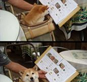 He noticed he forgot his reading glasses…