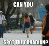 Spot the Canadian…