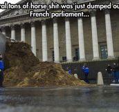 Accurate protest…
