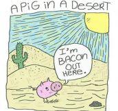 A pig in a desert…