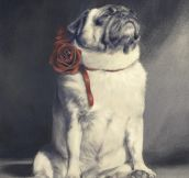 Majestic as Pug…