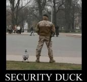 Security Duck is on patrol…
