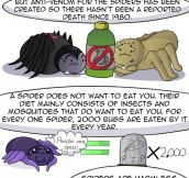 Truth about spiders…