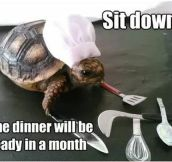 I got a new slow cooker…