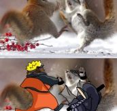 Naruto squirrel…