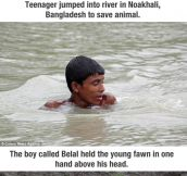 Boy risked his life to save baby deer